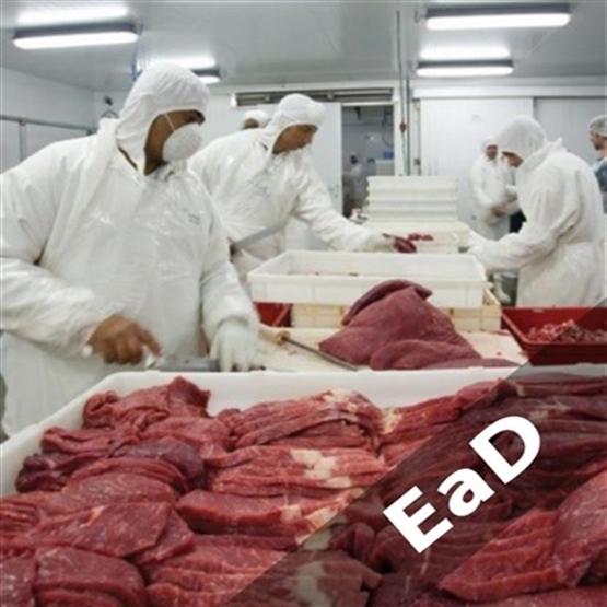 Capacitação em Tecnologia da Carne e Derivados- *BÔNUS: Novo RIISPOA