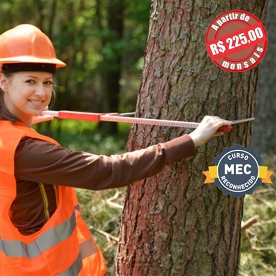 MBA em Gestão e Manejo Florestal EAD