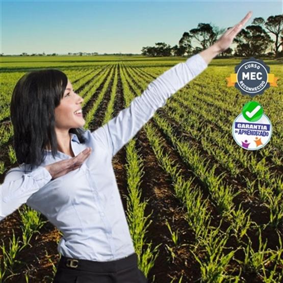 MBA Executivo em Gestão e Inovação no Agronegócio - EaD