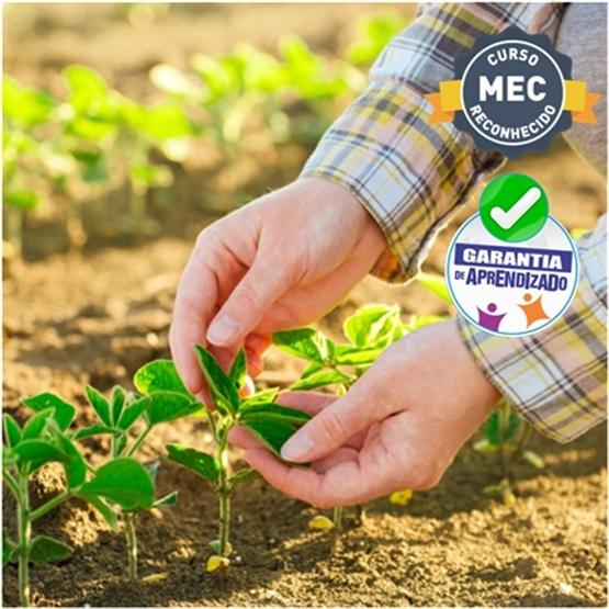 MBA em Produção Vegetal -  Ecofisiologia e Manejo de Culturas - EaD