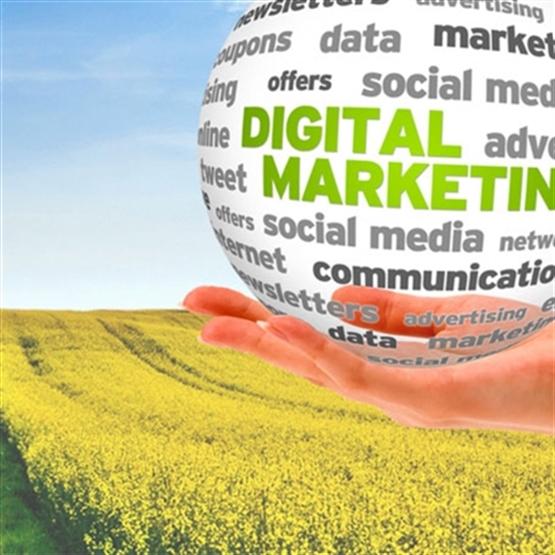 Marketing Digital para o Agronegócio - Capacitação EaD
