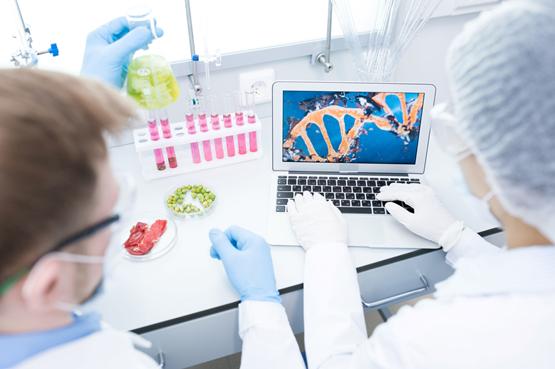 Capacitação em Doenças Transmitidas por Alimentos